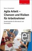 Agile Arbeit - Chancen und Risiken für Arbeitnehmer (eBook, PDF)