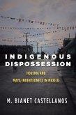 Indigenous Dispossession (eBook, ePUB)