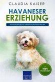 Havaneser Erziehung: Hundeerziehung für Deinen Havaneser Welpen (eBook, ePUB)