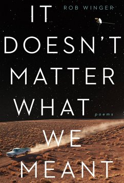 It Doesn't Matter What We Meant: Poems - Winger, Rob
