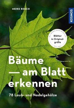 Bäume am Blatt erkennen (eBook, PDF) - Bosch, Meike