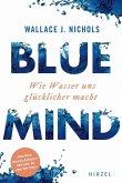 BLUE MIND (eBook, PDF)