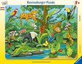 Ravensburger 05140 - Tiere im Regenwald, Rahmenpuzzle, 11 Teile