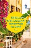 Sommerreise ins Glück (eBook, ePUB)