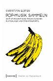 Pop-Musik sammeln (eBook, PDF)