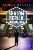 Shalom Berlin - Gelobtes Land / Alain Liebermann Bd.3