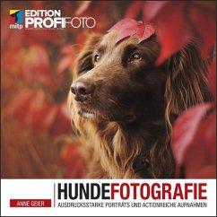 Hundefotografie (eBook, ePUB) - Geier, Anne