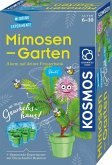 KOSMOS 657802 - Mimosen-Garten, Pflanzen züchten, Experimentier Set
