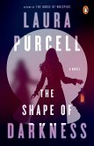 The Shape of Darkness (eBook, ePUB)