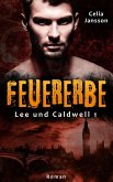 Feuererbe (eBook, ePUB)