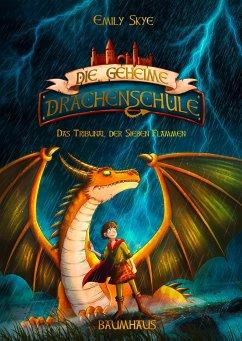 Das Tribunal der Sieben Flammen / Die geheime Drachenschule Bd.5