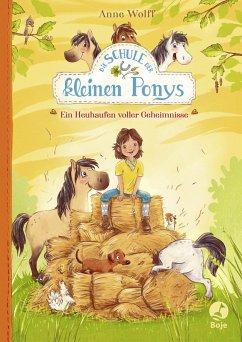 Die Schule der kleinen Ponys - Ein Heuhaufen voller Geheimnisse (eBook, ePUB) - Wolff, Anne
