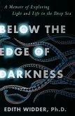 Below the Edge of Darkness (eBook, ePUB)