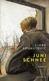 Junischnee (eBook, ePUB)