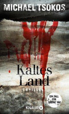 Kaltes Land (eBook, ePUB) - Tsokos, Michael