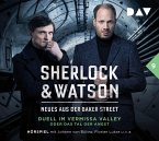 Duell im Vermissa Valley oder Das Tal der Angst / Sherlock & Watson - Neues aus der Baker Street Bd.9 (2 Audio-CDs)