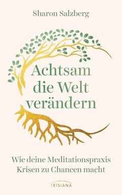 Achtsam die Welt verändern (eBook, ePUB) - Salzberg, Sharon