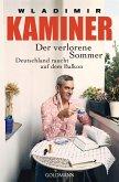 Der verlorene Sommer (eBook, ePUB)