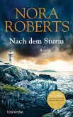 Nach dem Sturm (eBook, ePUB)