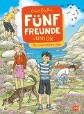 Fünf Freunde JUNIOR - Der unsichtbare Dieb