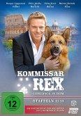 Kommissar Rex-Comeback in Rom (Staffeln 11-13)
