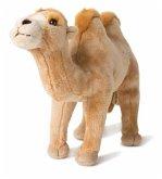 WWF Plüsch 00830 - Trampeltier, Asien-Kollektion, Plüschtier, 29 cm