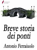 Breve storia dei ponti (eBook, ePUB)