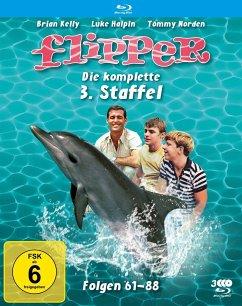 Flipper-Die komplette 3.Staffel (3 Blu-rays) (F - Kelly,Brian/Norden,Tommy