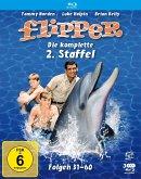 Flipper-Die komplette 2.Staffel