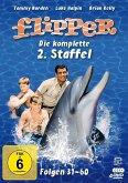 Flipper-Die komplette 2.Staffel (4 DVDs) (Ferns