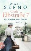 Große Elbstraße 7 - Das Schicksal einer Familie / Geschichte einer Hamburger Arztfamilie Bd.1