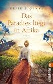 Am Kap der goldenen Träume / Südafrika-Roman Bd.2
