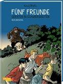 Fünf Freunde in Gefahr / Fünf Freunde Bd.5