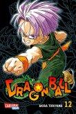 Dragon Ball Massiv Bd.12
