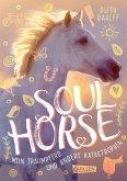 Mein Traumpferd und andere Katastrophen / Soulhorse Bd.1 (eBook, ePUB)