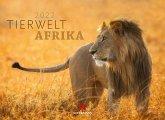 Tierwelt Afrika 2022