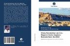 Virale Pandemien als Cro-Magnon Homo Sapiens-Neandertaler-Konflikt