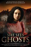 She Sees Ghosts - The Story of a Woman Who Rescues Lost Souls: Part of the Adirondack Spirit Series