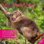 Keep Smiling 2022 Broschürenkalender