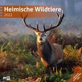 Heimische Wildtiere 2022 Broschürenkalender
