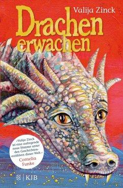 Drachenerwachen / Drachen Bd.1 (Mängelexemplar) - Zinck, Valija