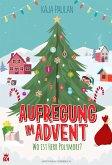 Aufregung im Advent - Wo ist Herr Polymorf? (eBook, ePUB)