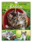 """Wochenkalender """"Katzen"""" 2022"""