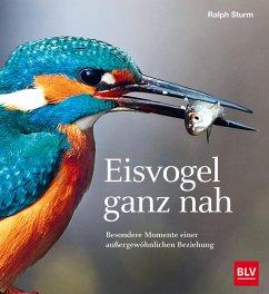 Eisvogel ganz nah (eBook, ePUB) - Sturm, Ralph