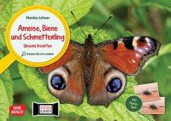 Ameise, Biene und Schmetterling. Unsere Insekten. Kamishibai Bildkarten und Memo-Spiel. - Lehner, Monika