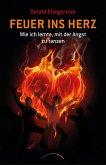 Feuer ins Herz (eBook, ePUB)