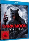 Darkmoon Rising