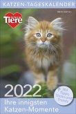 Katzen-Tageskalender 2022