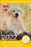 Hunde-Tageskalender 2022