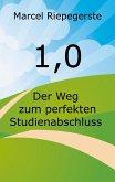 1,0 (eBook, ePUB)